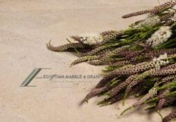 Desert-Marble-l-Imperial-Maerble-or2x6mjzjr50hhpk75s854zqp6cqn1dzl1u4l2k6n0